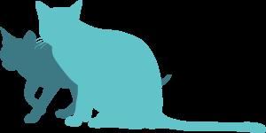 dog-cat-12